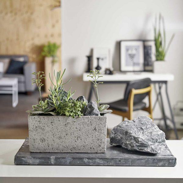 latina-concrete-ambiente