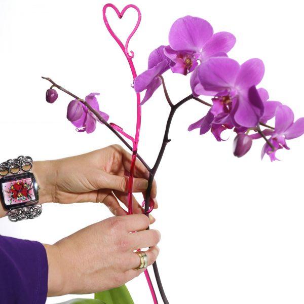 Orchideenstab-06
