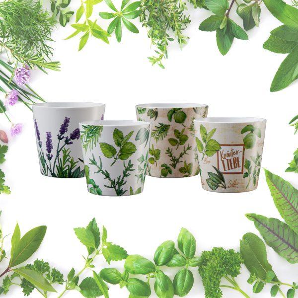 ambiente_dallas_herbs
