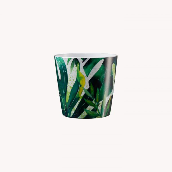 produkte_indoor_uebertopf_dallasbotanic_monstera-8001