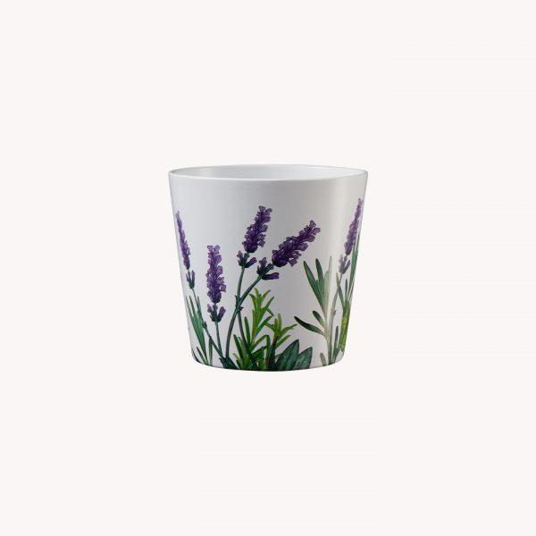 produkte_indoor_uebertopf_dallasherbs_lavendelwiese-8038