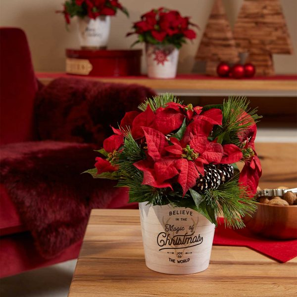 dallas_christmas_ambiente
