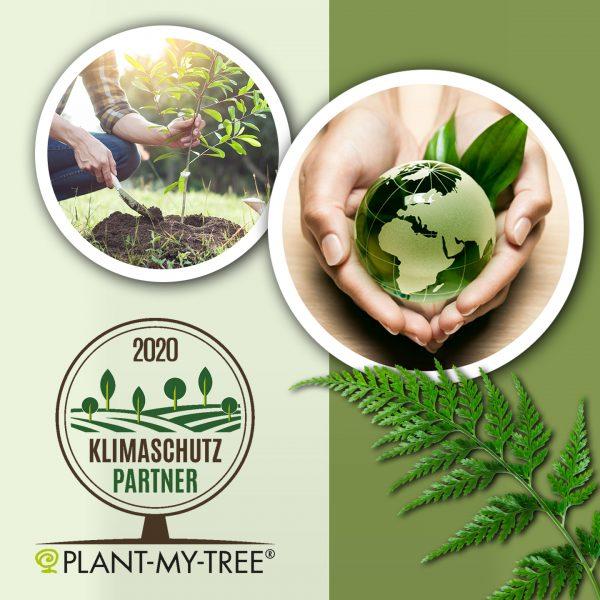 nachhaltigkeit_plant_my_tree